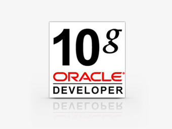 Oracle Developer